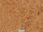 Пробковое покрытие для стен Wicanders Hawai Brown