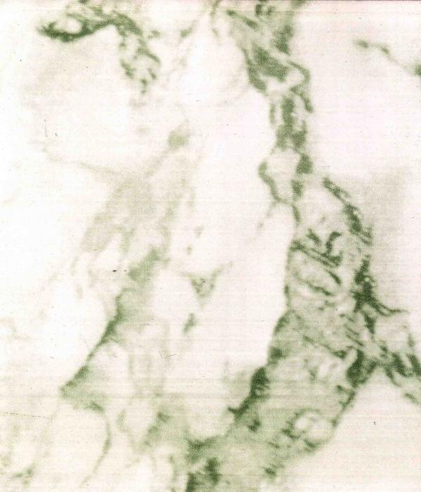 Lambrin Tekoplast #1