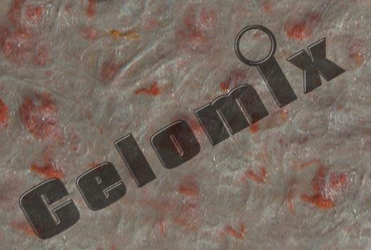 Sulu dekorativ divar (maye oboy) Celomix #1