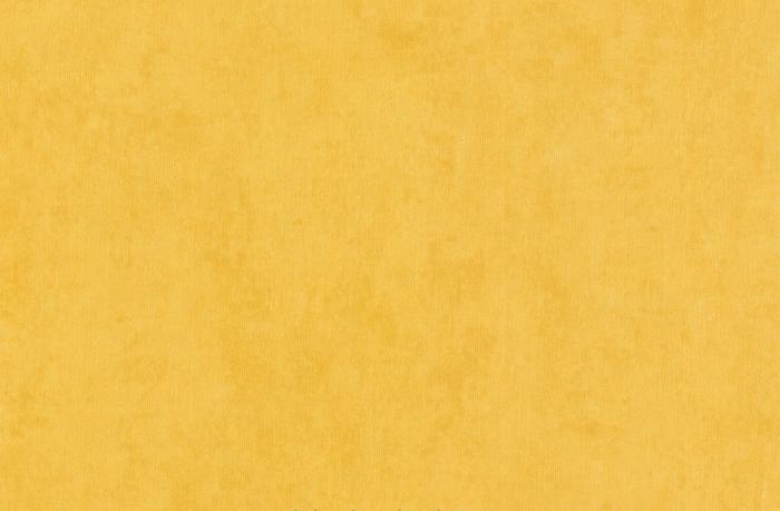 Vinil divar kağızları A.S.Creation Boys and Girls 3 ( 6899-17) #1